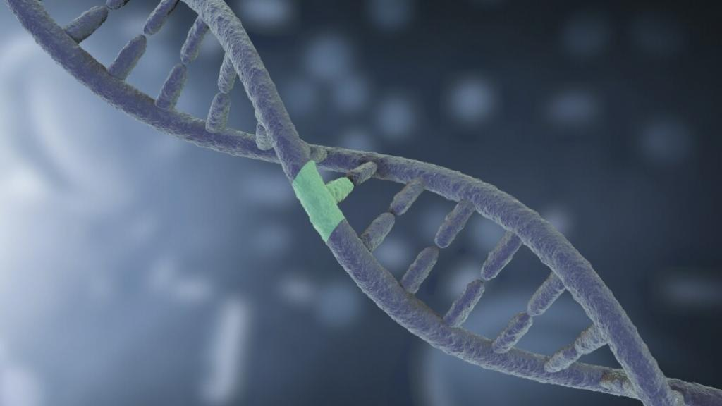 Science video of DNA