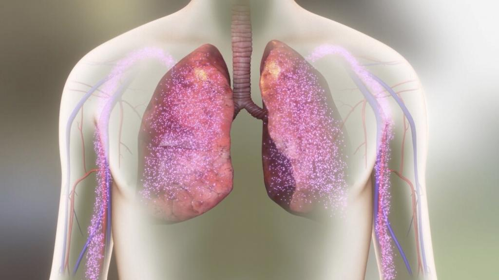animation of lungs