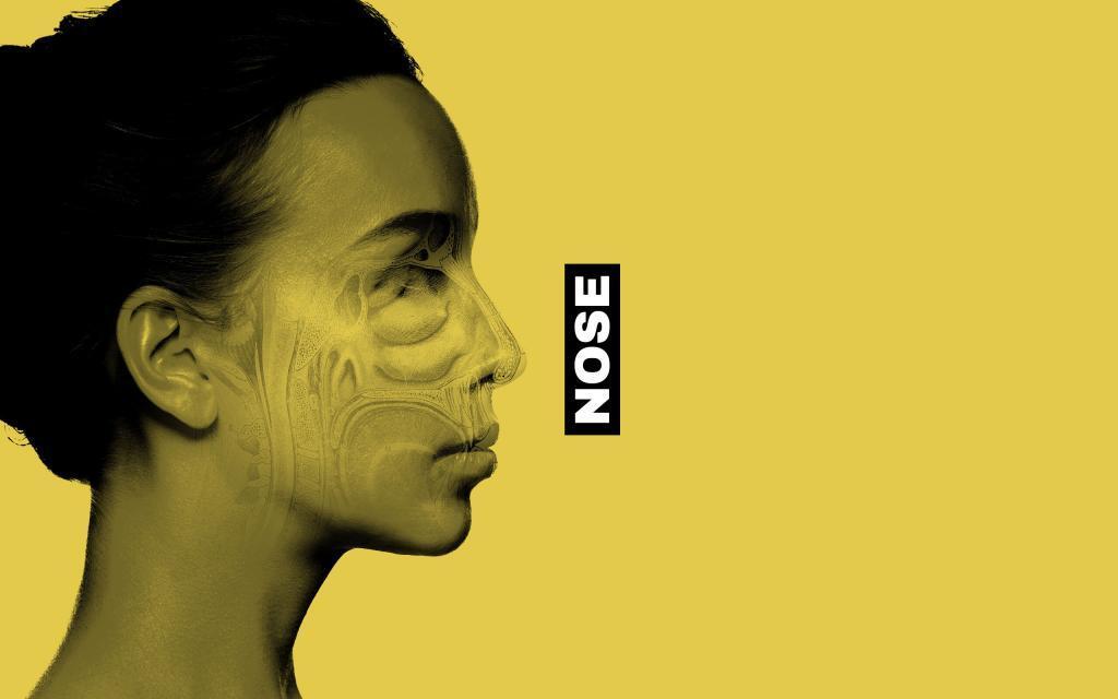 migraine Nose